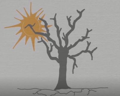 Denaturalising Natural Disasters