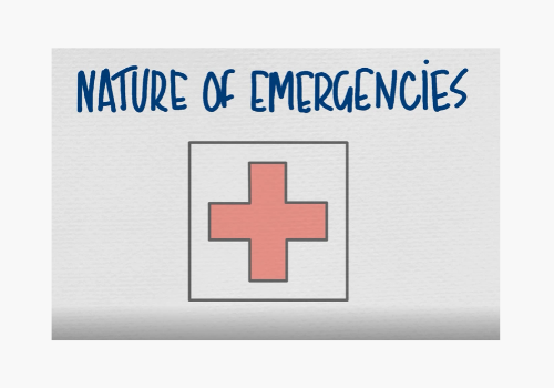 Animation 4 - Nature of Emergencies